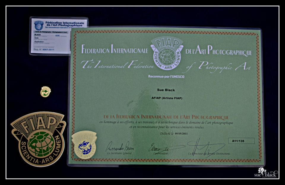 Afiap Honours Certificate Badge And Photographers Card Sue Black