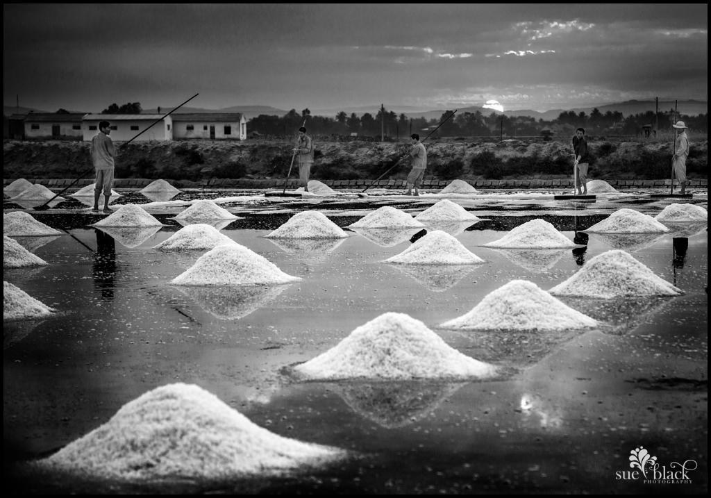 salt_sweepers_b_w
